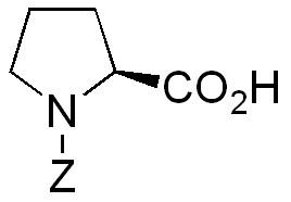 ZP2450.jpg