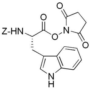 ZW2526.jpg